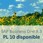 sap business one 9.3 - PL10 - es